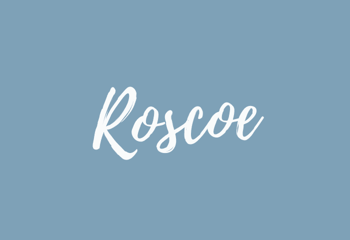 Roscoe name meaning
