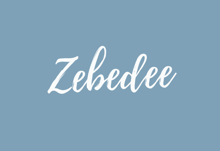 Zebedee name meaning