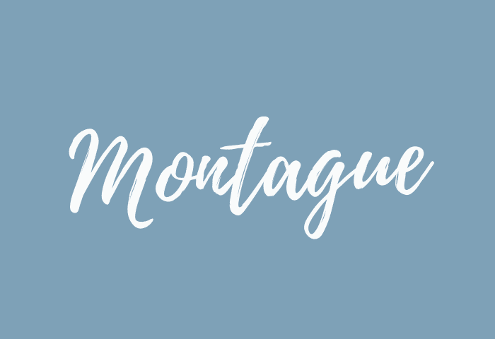 Montague name meaning