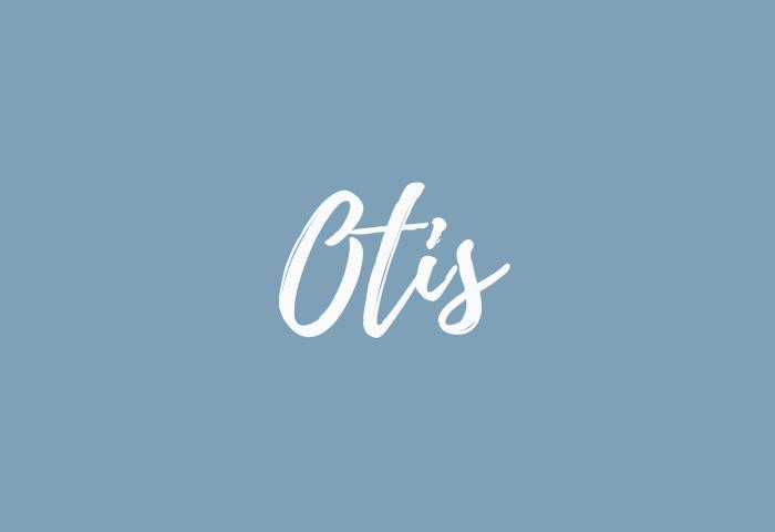 otis name meaning