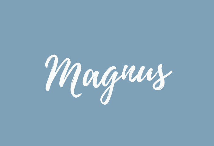 Magnus Name Meaning