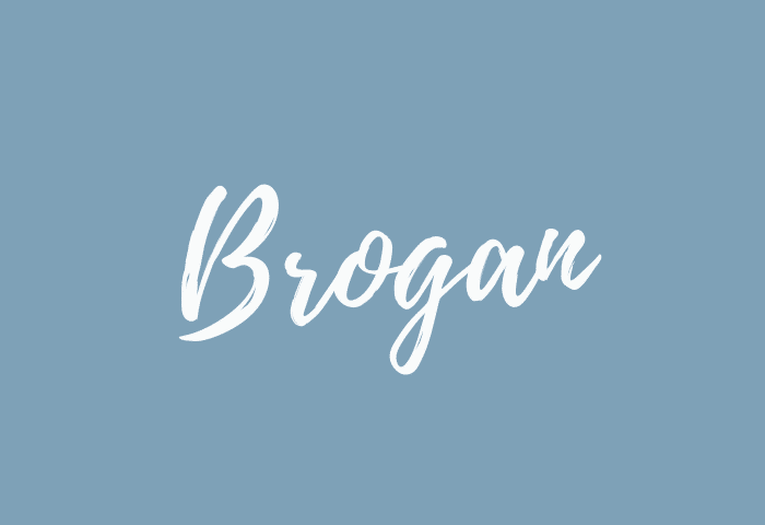 brogan name meaning