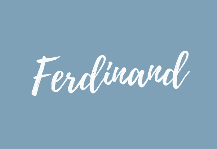 ferdinand name meaning