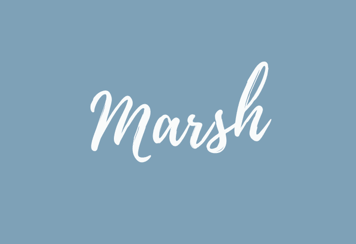 Marsh name meaning