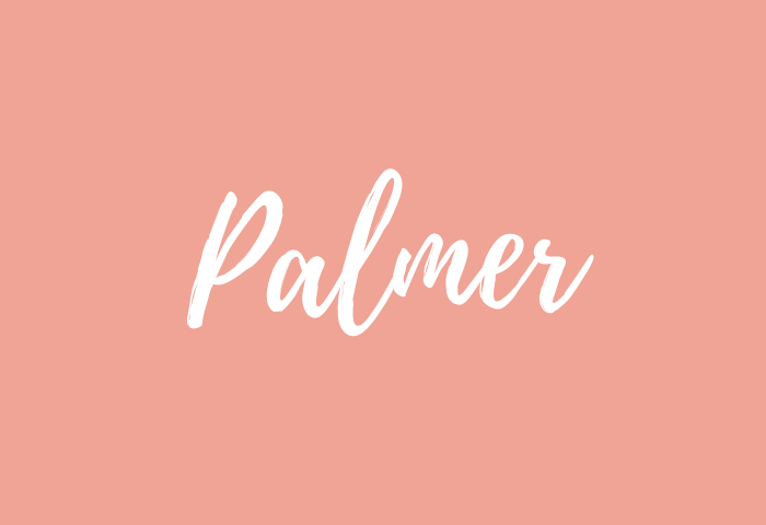 Palmer name meaning