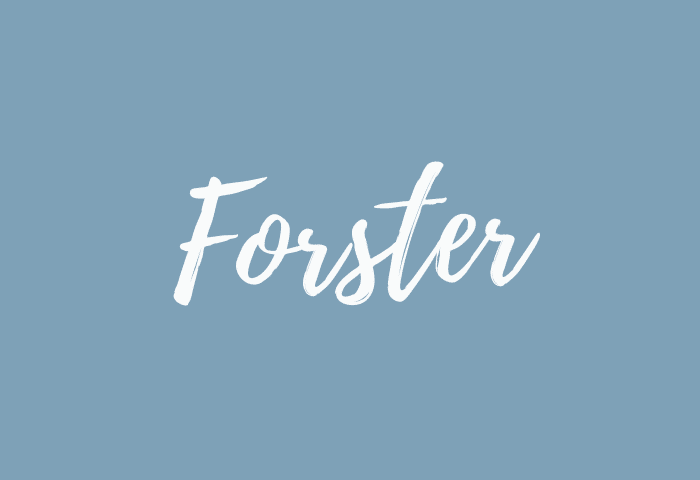 Forster name meaning