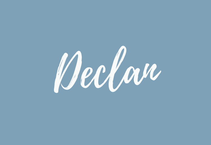 declan name meaning