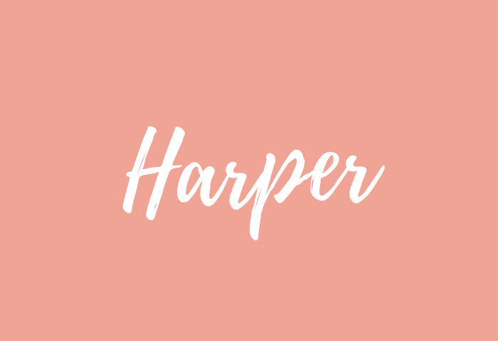 harper name meaning