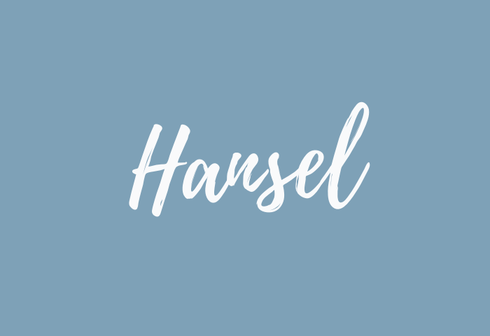 hansel name meaning