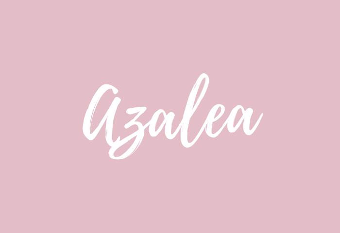 azalea name meaning
