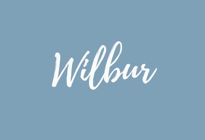 wilbur name meaning