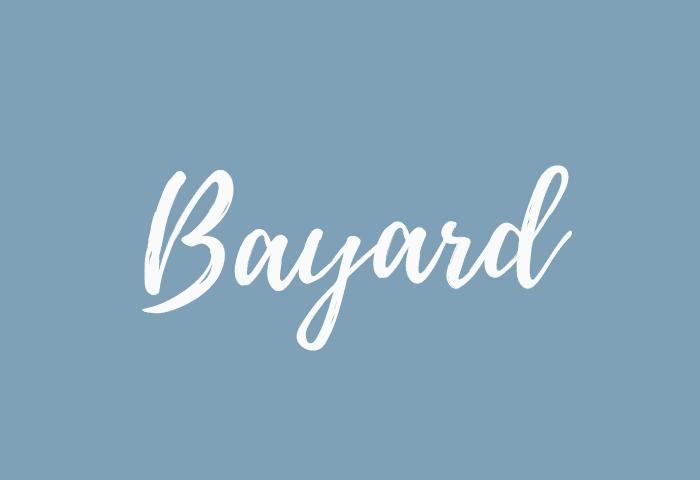 Bayard name meaning