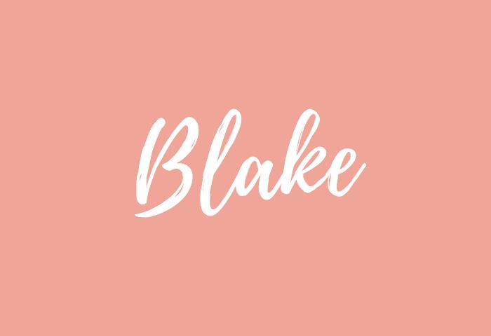 Blake name meaning