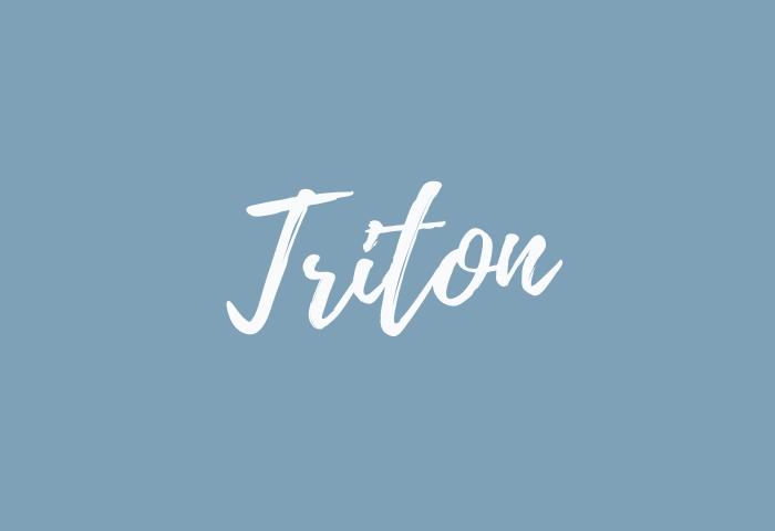 triton name meaning