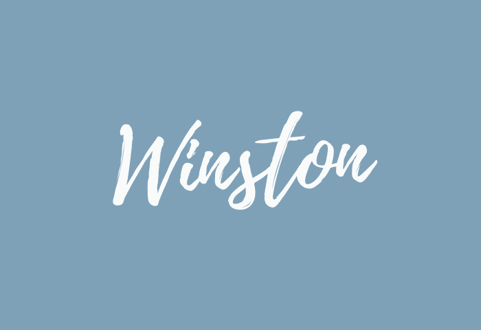 Winston name meaning