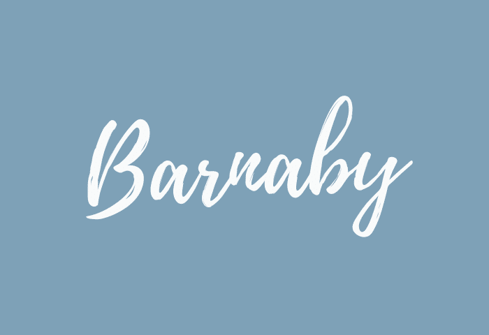 barnaby name meaning
