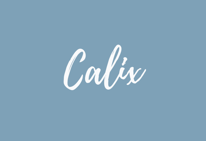 calix name meaning