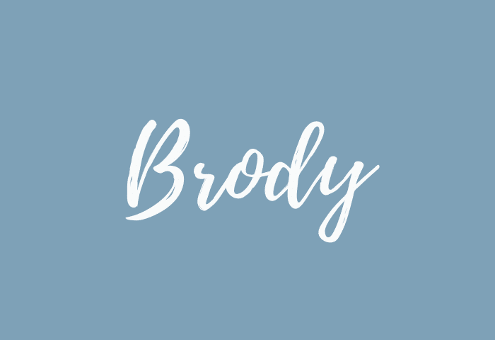 brody name meaning