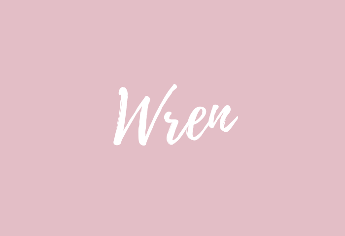 wren Name Meaning