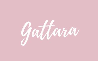 Gattara
