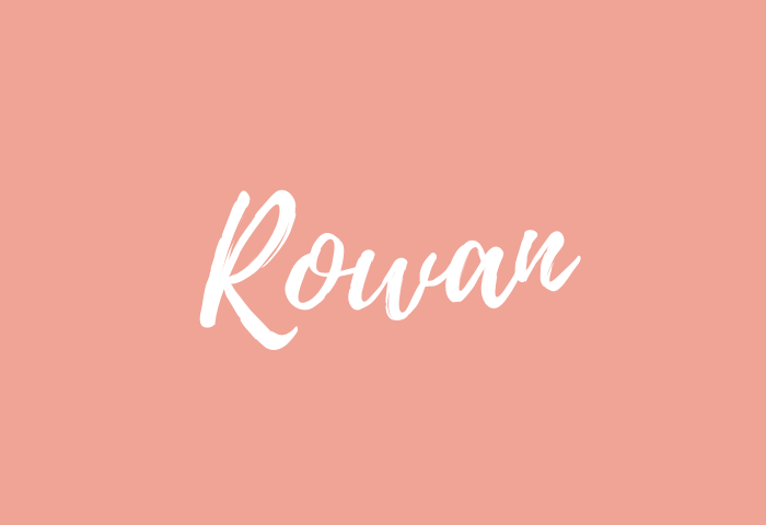 rowan name meaning