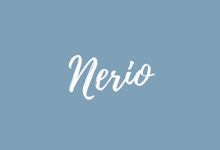 nerio name meaning