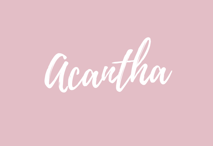 Acantha Name Meaning