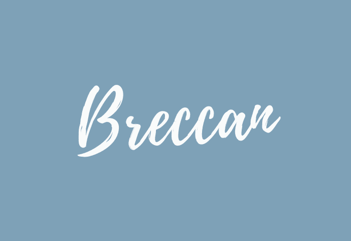 breccan name meaning