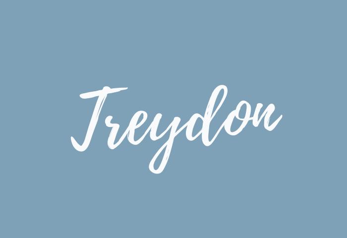 treydon name meaning