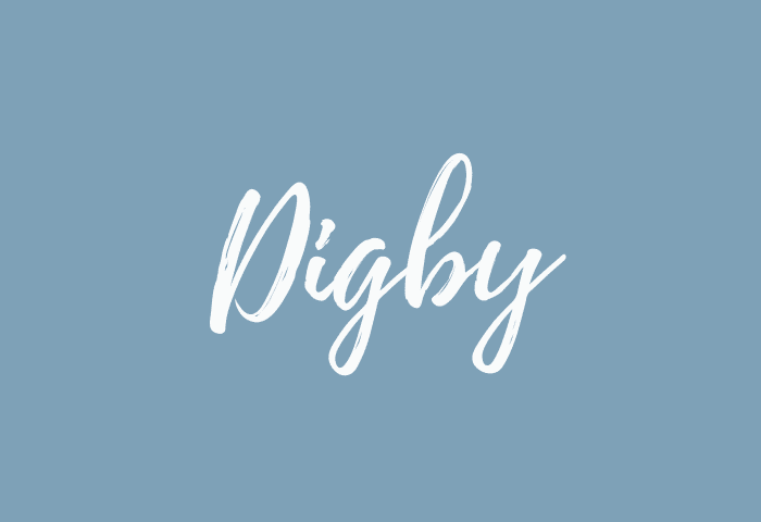 Digby name meaning