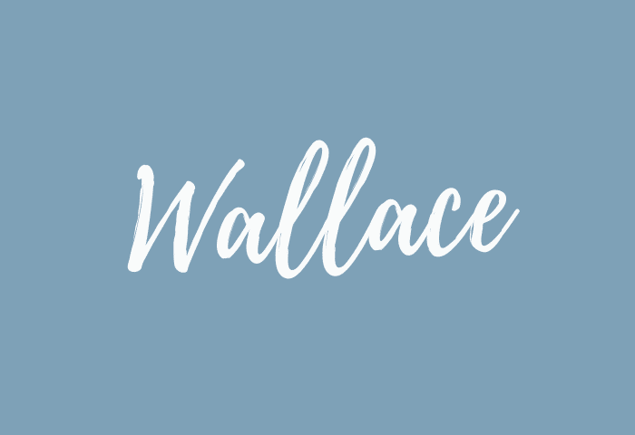 Wallace name meaning