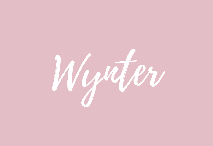 wynter name meaning