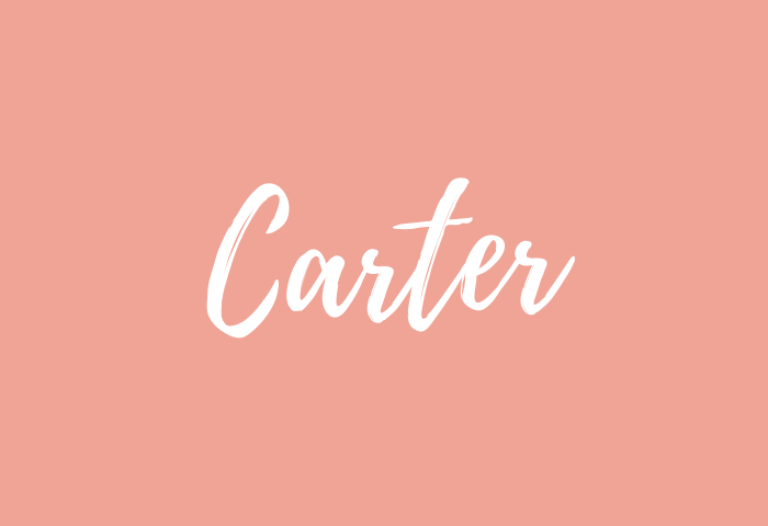 carter name meaning