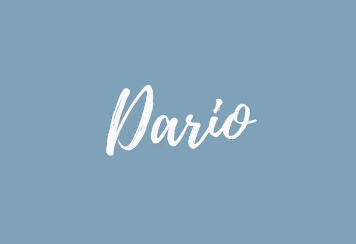Dario name meaning