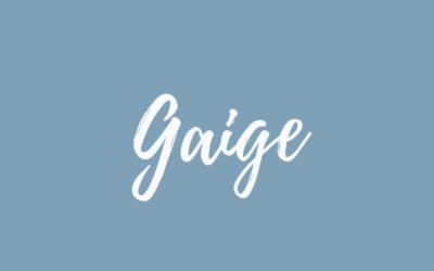 Gaige