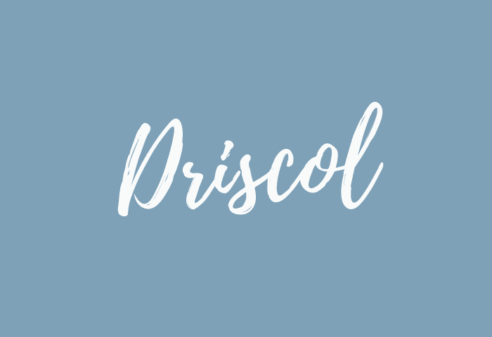 Driscol name meaning
