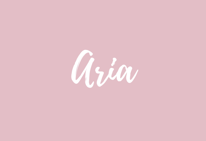Aria name meaning