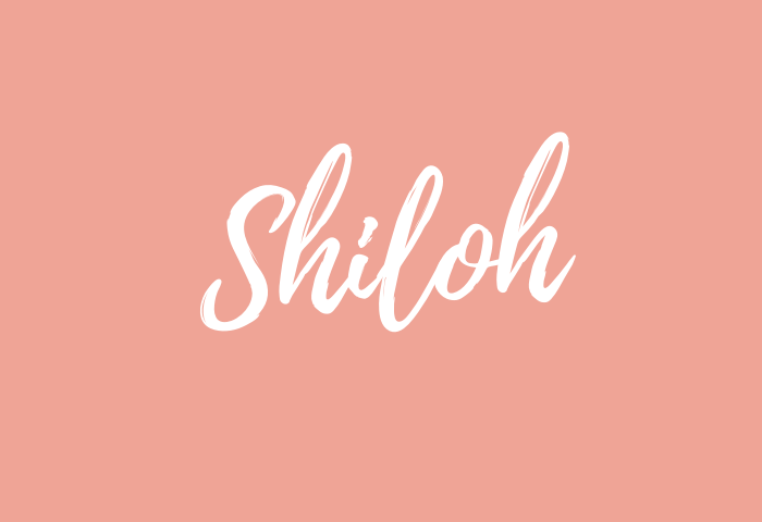 Shiloh name meaning
