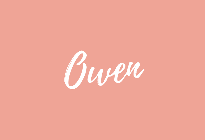 Owen name meaning