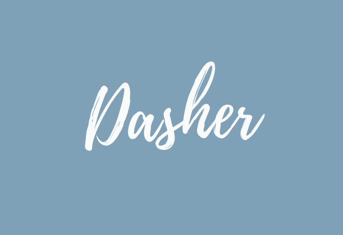 Dasher name meaning
